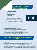 palestra_fluxo_caixa