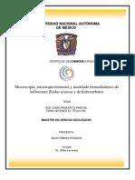 Modelado termodinámico de inclusiones fluidas acuosas y de hidrocarburos