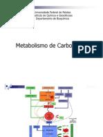 Metabolismo de glicídeos