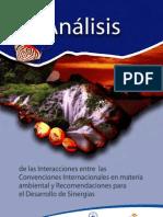 Analisis de Interacciones entre Convenciones Internacionales Ambientales en Nicaragua