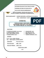 Informe Final Juancam12