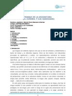 09010manzanovillarreal_EVAR