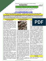NEWS-2005-12