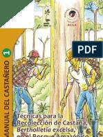 Manual Castana ACCA1