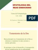 fisiopat-pancreas08