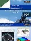 WB Thermal Transients NF10 WS1