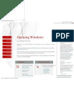 Samba - Opening Windows to a Wider World