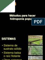 Hidroponia Popular