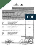 Evaluación Proovedores Externos - Indap.pdf