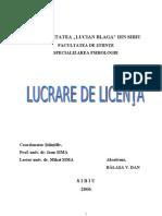 Licenta Balasa Dan 1