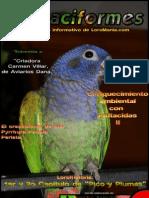 Psittaciformes nº3
