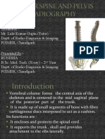 Lumber Spine and Pelvis Radiography