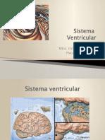 Sistema Ventricular