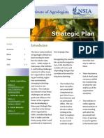 Strategic Plan Feb. 2011 v4