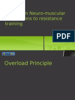Physiological Adaptations to Strength Training - VisualBee - VisualBee