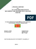 Customer Perception and Distribution Chanel of Hul