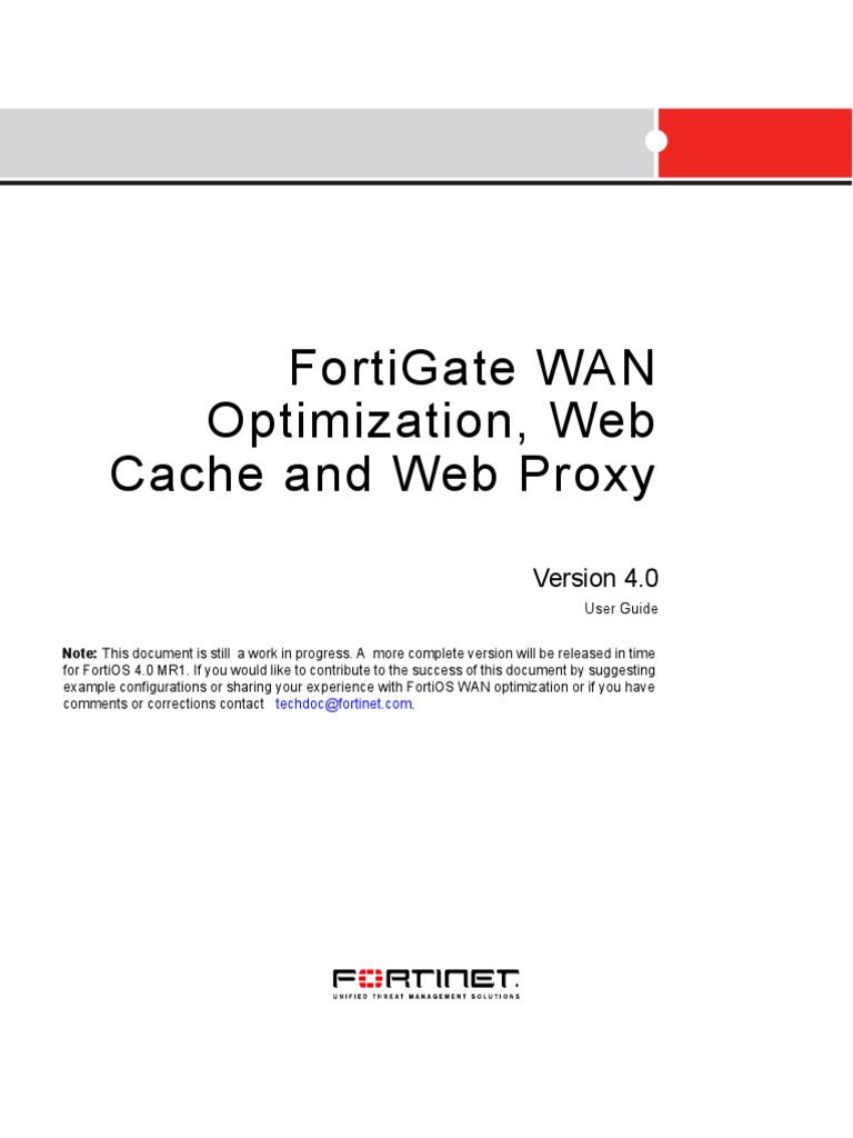 Fortigate Wanopt Cache Proxy Ga Proxy Server World Wide Web