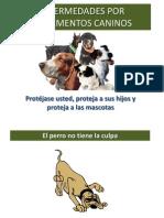 Manejo Heces Del Perro