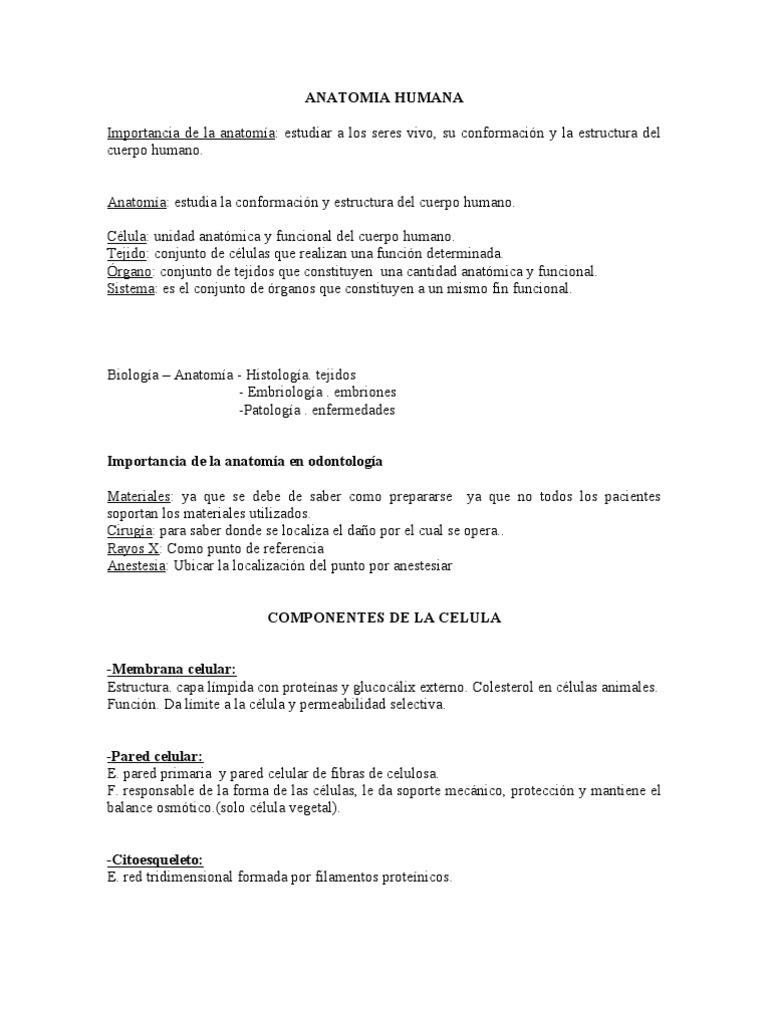 Encantador Importancia Del Estudio De La Anatomía Humana Colección ...