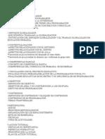 GUIÓN PROGRAMACION SEGUN DOCENTESS