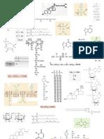identifica biomoléculas II