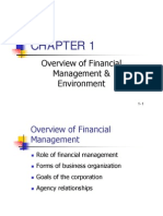 Ch 1 Overview and Financial Environment