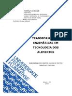 TRANSFORMAÇÕES ENZIMÁTICAS EM TECNOLOGIA DOS ALIMENTOS