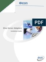 DIVA Server