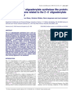 p59OASL, A 2-5 Oligoadenylate Synthetase Like Protein