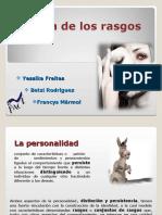 TEORIA_DE_RASGOS