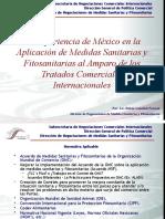 14 - Rubén González - Presentación Seminario SPS ALCA-OEA en Puebla (6-10.11.2006)
