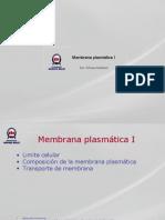 membrana plasm 1