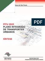 Pitu_2025_01