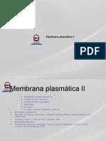 membrana plasm 2b