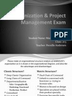 Organization & Project Management Exam