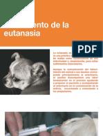 7 El momento de la eutanasia