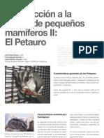7 Introducción a la clínica de pequeños mamíferos II