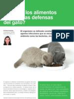 10 ¿Pueden los alimentos reforzar las defensas del gato?