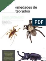 10 Las enfermedades de los invertebrados