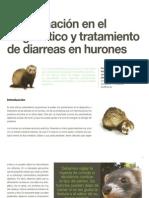 11 Aproximación en el diagnóstico y tratamiento de diarreas en hurones