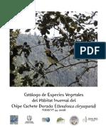 Catalogo de Flora del Habitat Invernal Del Chipe Cachete Dorado