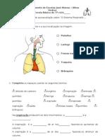 Ficha de autoavaliação sistema respiratório