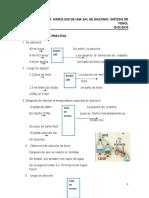 Informe 1-Obtención e hidrólisis de una sal de diazonio-síntesis del fenol scrib