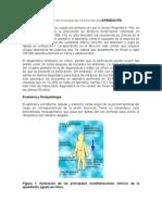 Apendicitis en El Ni%F1o