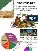 CV 16 Biodiversidad 2010