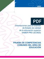 ECAES Guia Area Educacion[1]