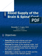 Blood Supply of the Brain and Spinal Cord