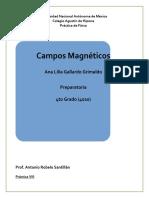Práctica de Física Campos Magnéticos 5to Periodo Ana Lilia Gallardo Grimaldo ;)