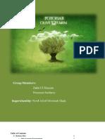 Olive Plantation Business Plan Pakistan