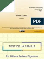 066_Temática Test de Familia